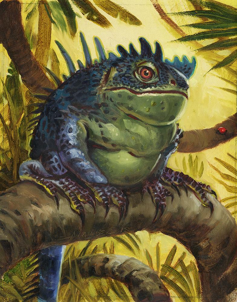 Frog Lizard