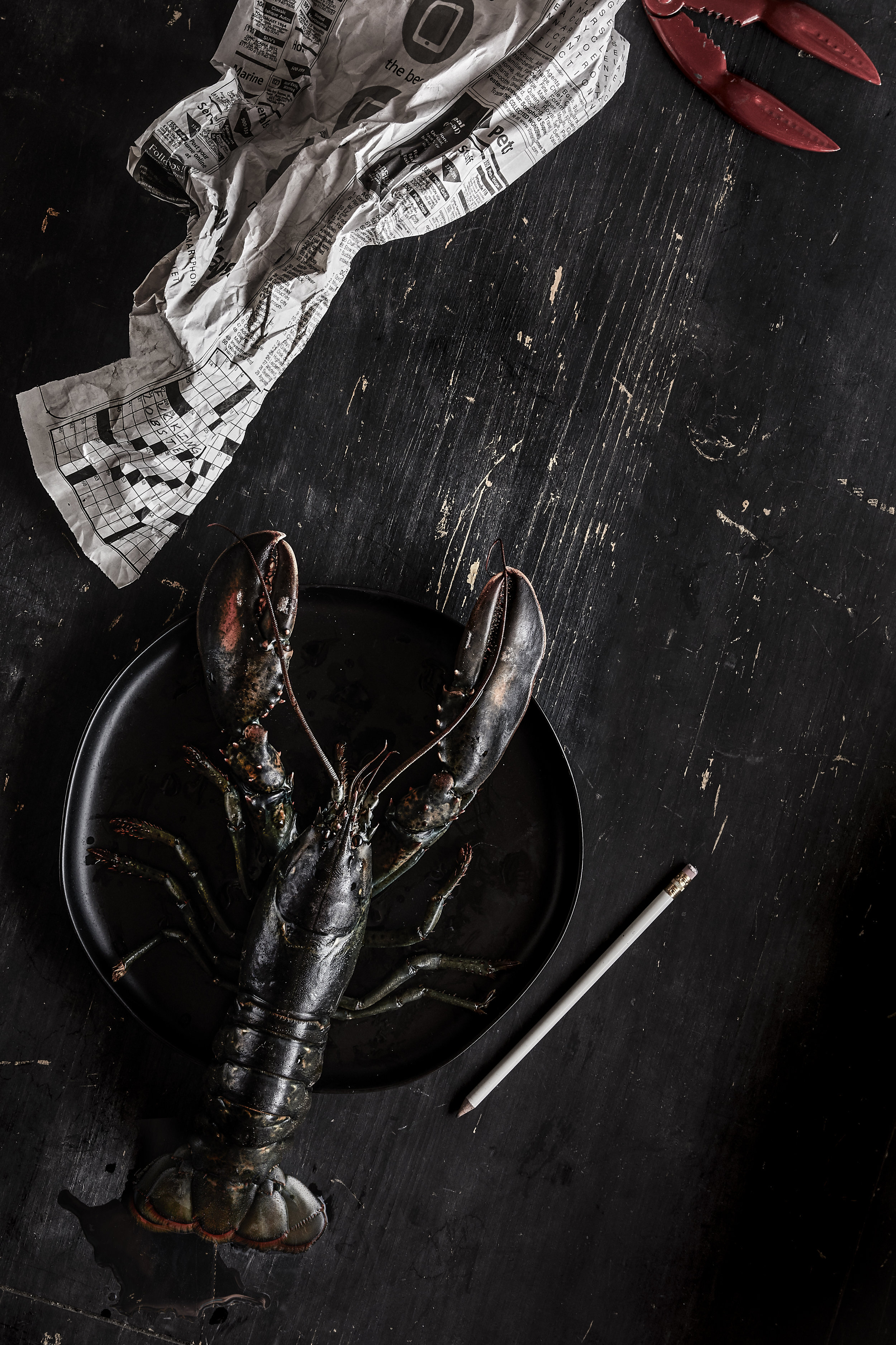 Lobster1215_Final_NoLemons.jpg