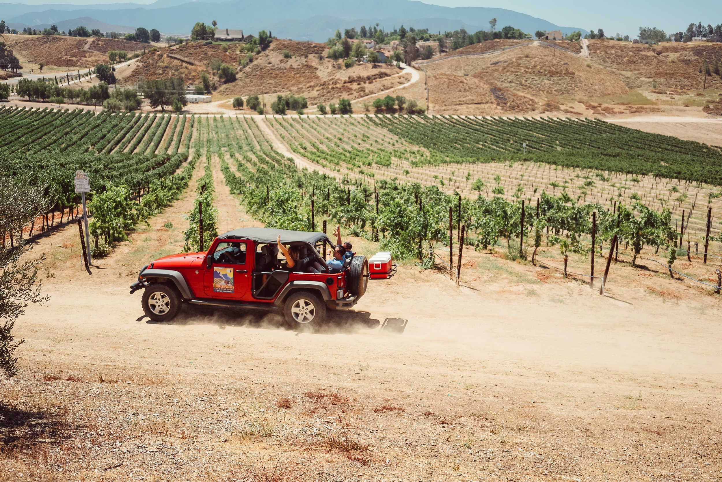 riding-in-a-jeep-around-a-vinyard