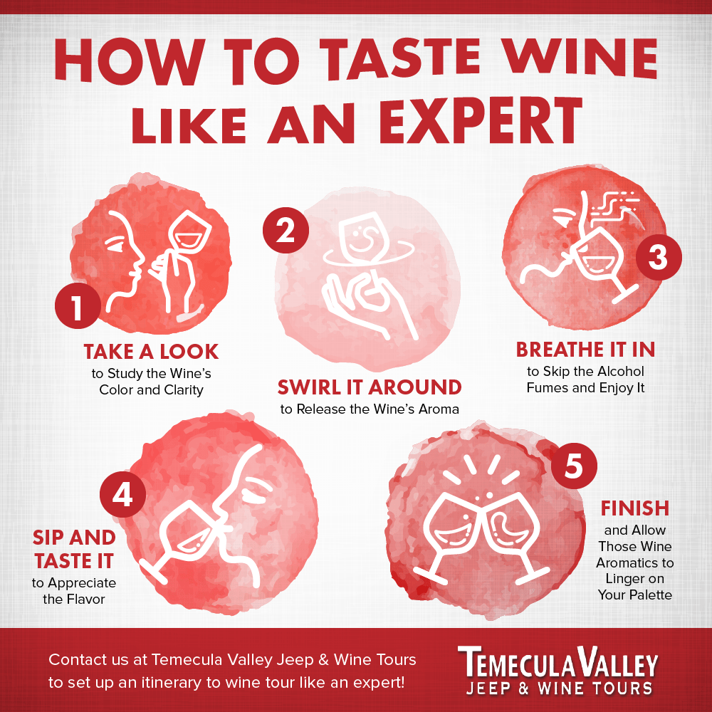 TEMECULA-VALLEY-JEEP-how-to-taste-wine.png