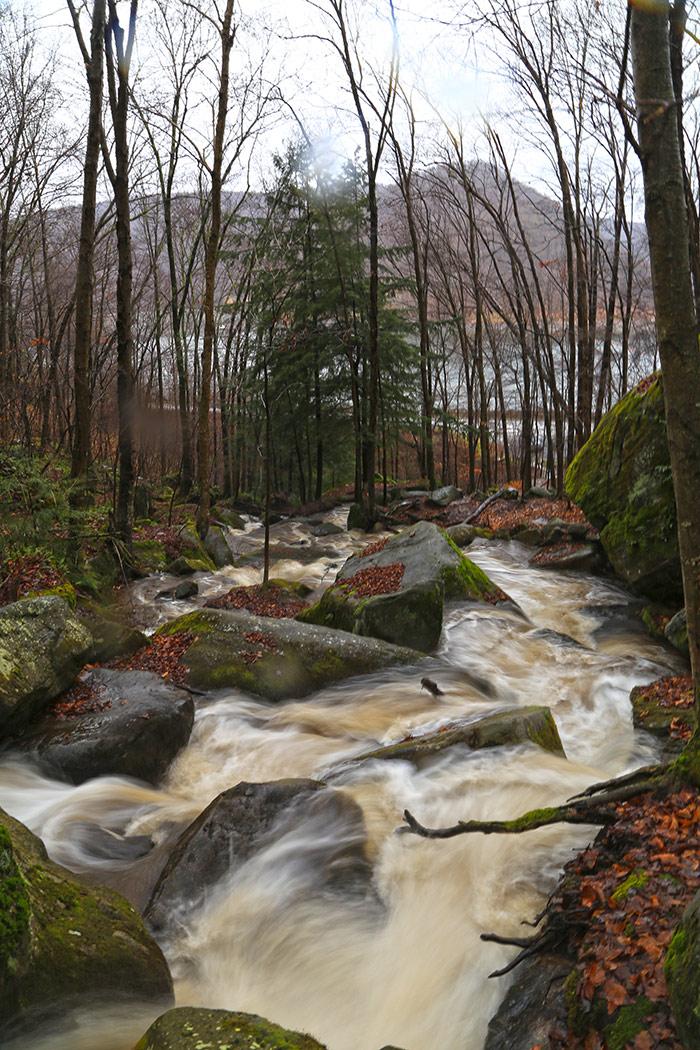 bent-run-allegheny-national-forest.jpg
