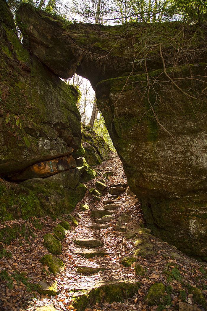 tanbark-trail-needle-rock.jpg