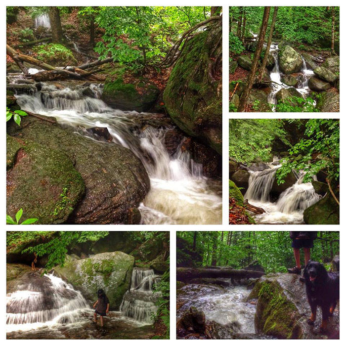 Bent Run waterfall in the Allegheny National Forest