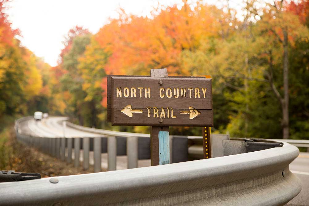 North Country Trail in the Allegheny National Forest - Route 59 Crossing