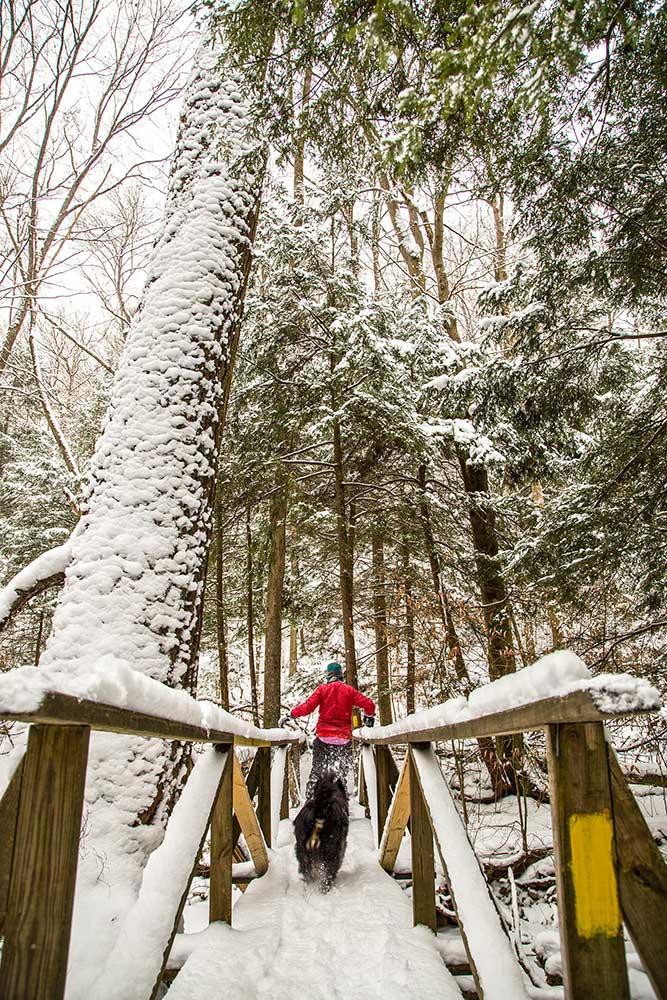 Anders Run Natural Area snowshoeing