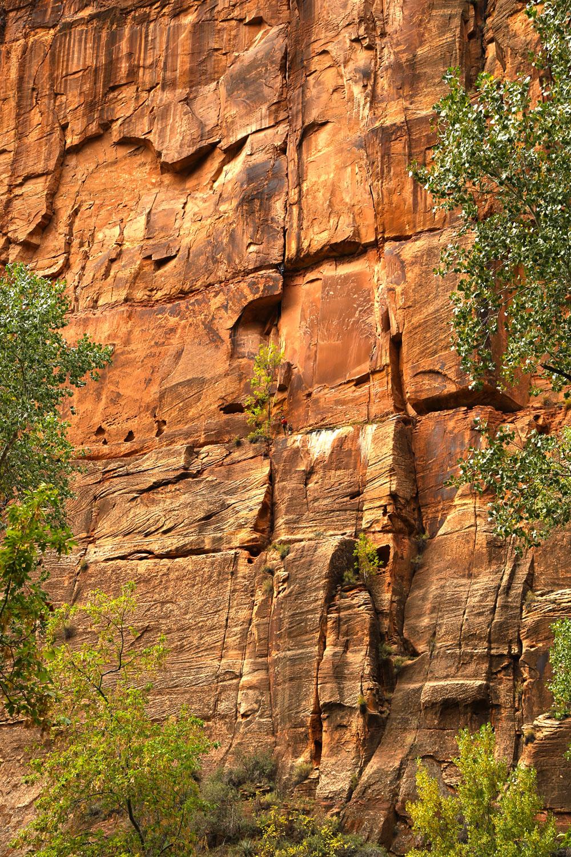 zion-canyon-climbers.jpg