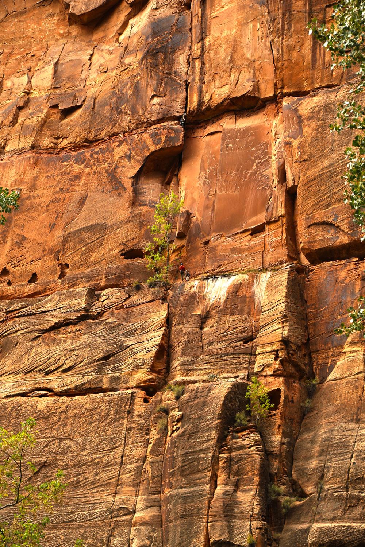zion-climbers.jpg