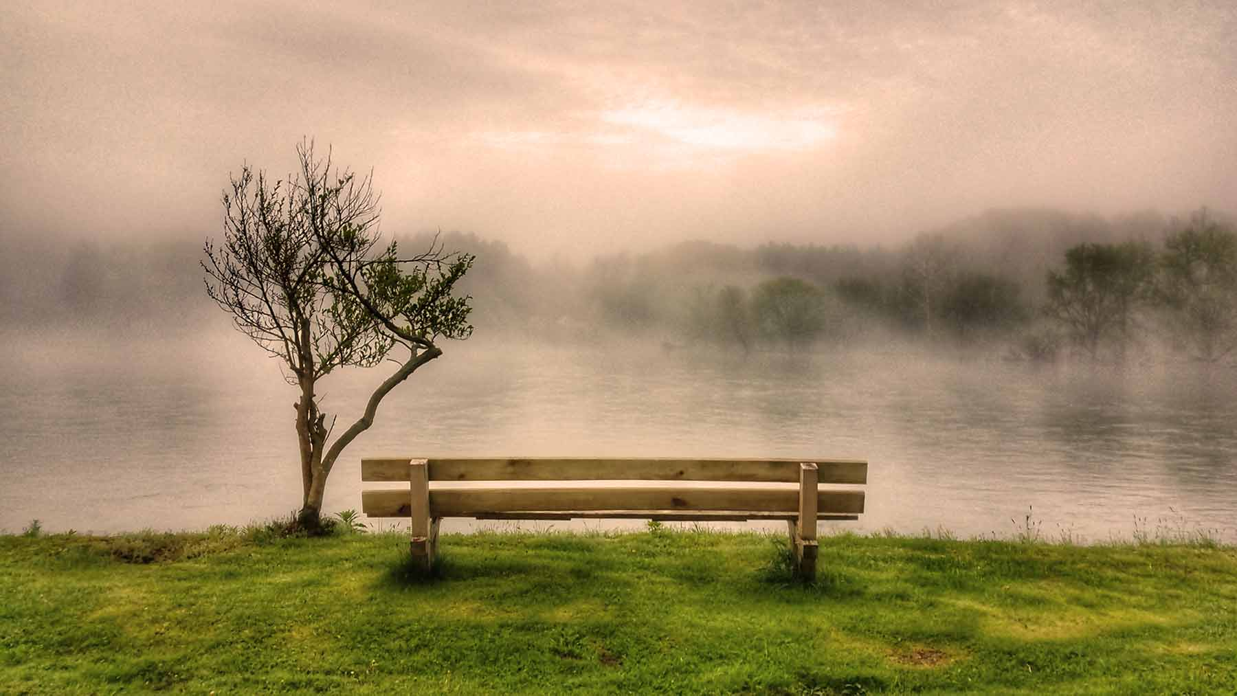 Bench along the Allegheny River in Starbrick, Pa.