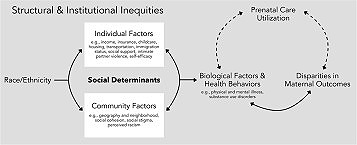 """Conceptual framework for the relationship between race/ethnicity, individual and community-level social determinants of health, and maternal outcomes. These relationships occur against a backdrop of historical structural and institutional inequities. Bi-directional arrows demonstrate the complex interaction of different social determinants in determining the ultimate pregnancy outcome. Dashed arrows represent the uncertainty that still remains in our understanding of the mechanism through which prenatal care utilization interacts with this relationship.""[2]"