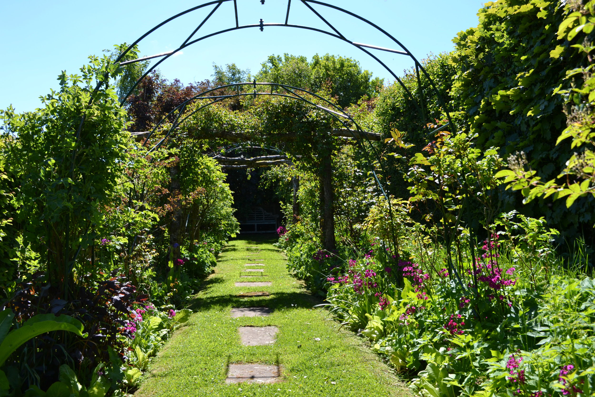 Rose arbour walk - image taken mid-May which is too early for roses to be in bloom in Cumbria