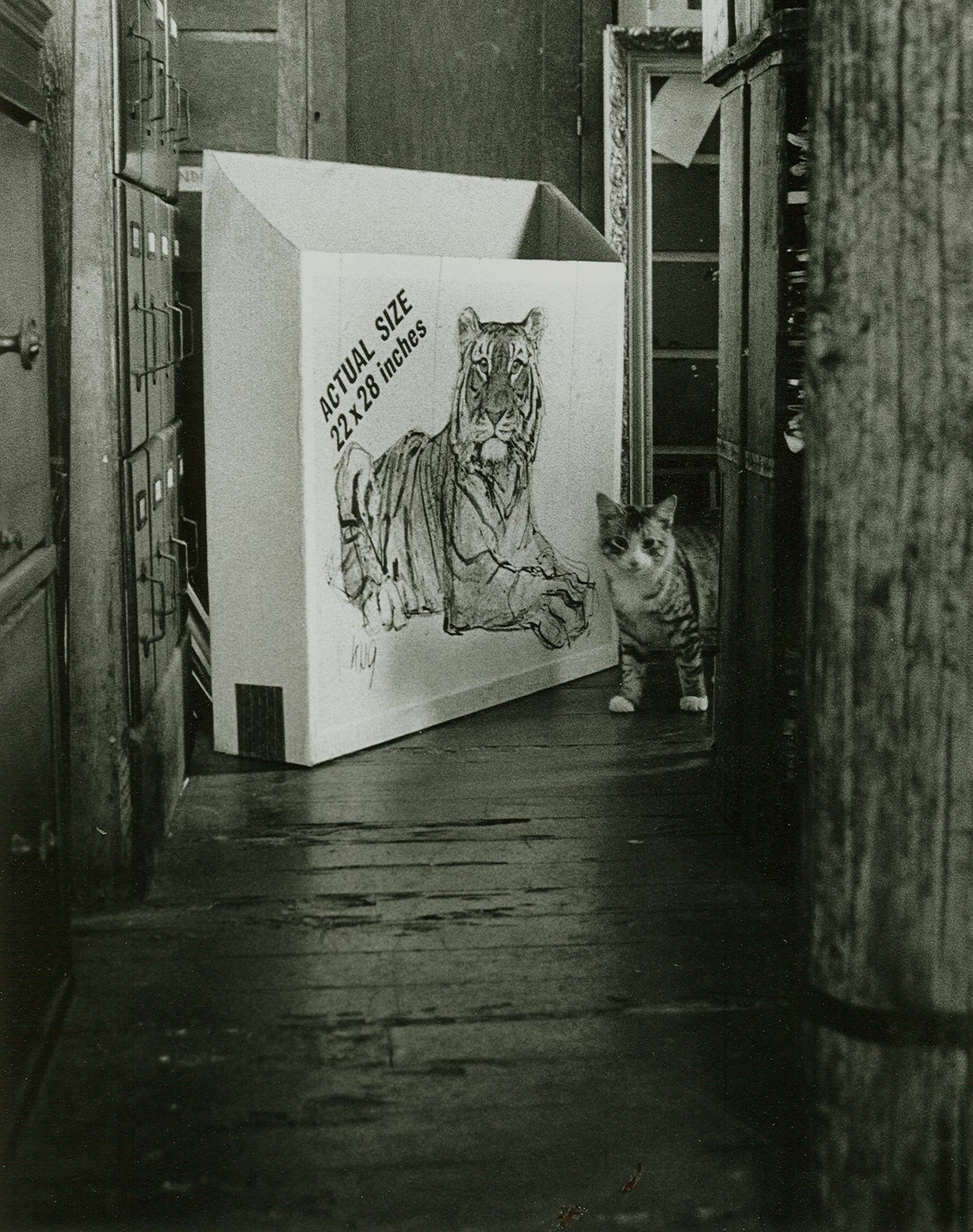 Loren Ellis Little Cat from Cat series 1973.jpg