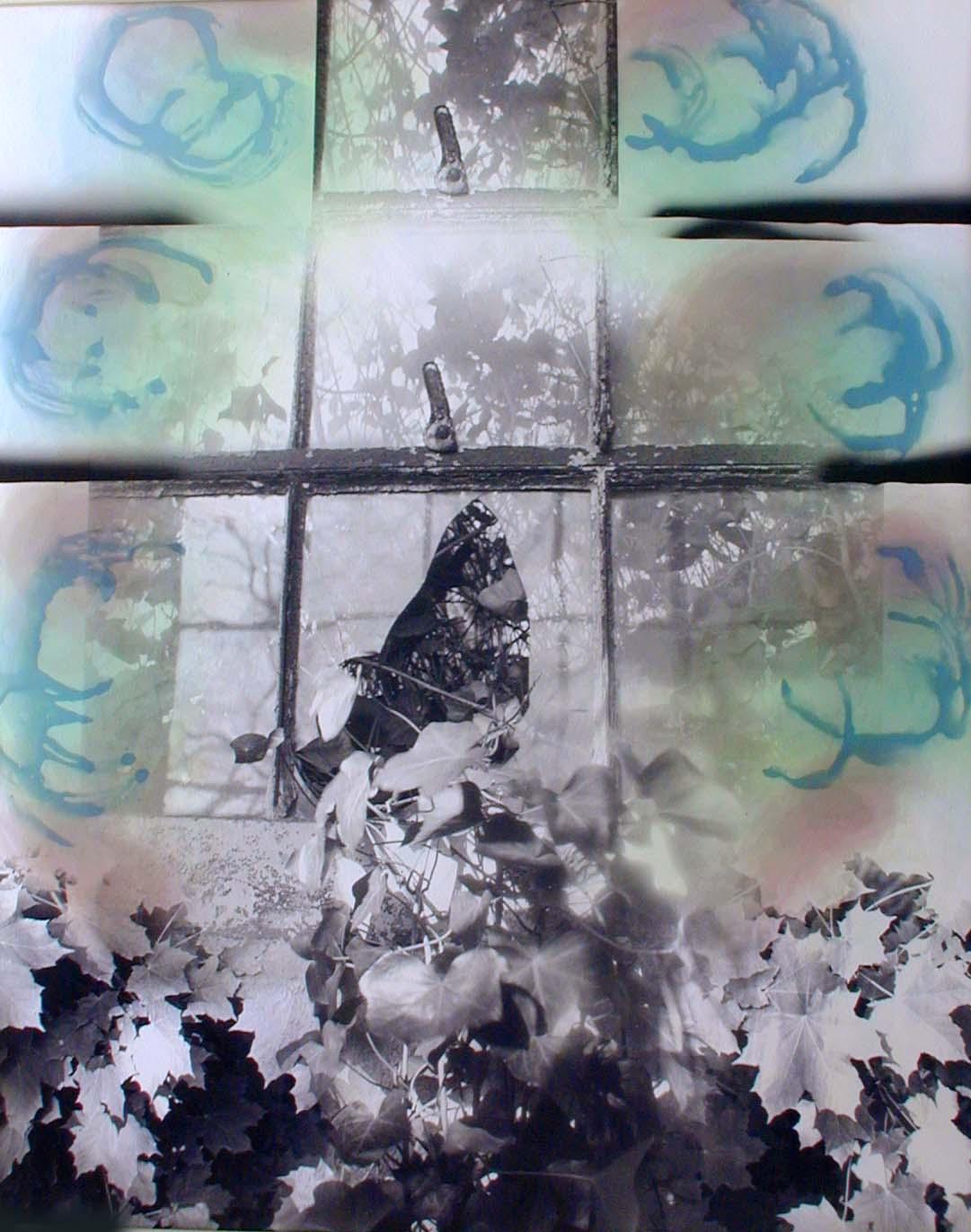 03 Ellis Island Window III.jpg