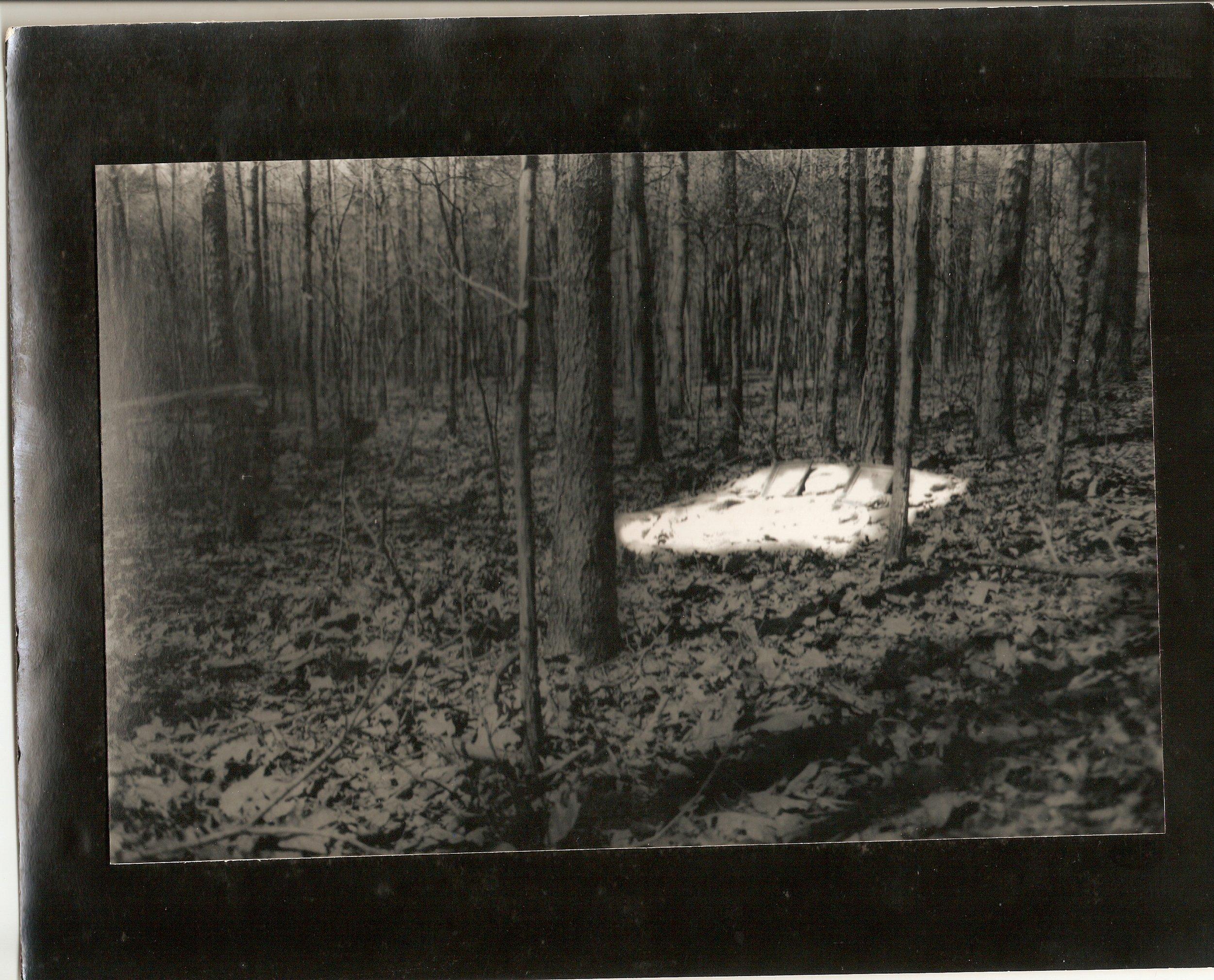 A Gray Peaceful Sleep in North Carolina  I  300 dpi.jpg