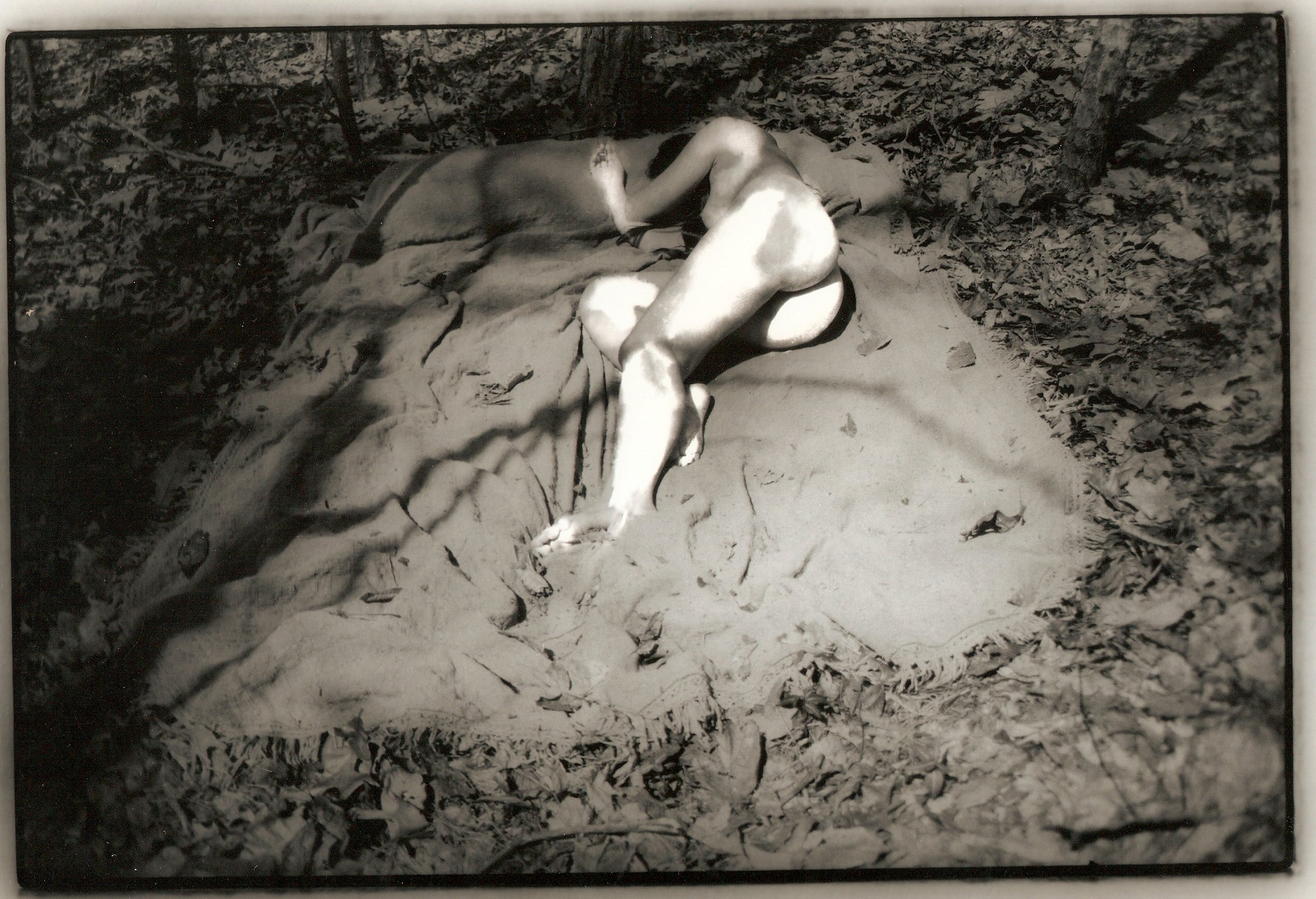 A Gray Peaceful Sleep in North Carolina IV 8 x 10 in 300 dpi.jpg