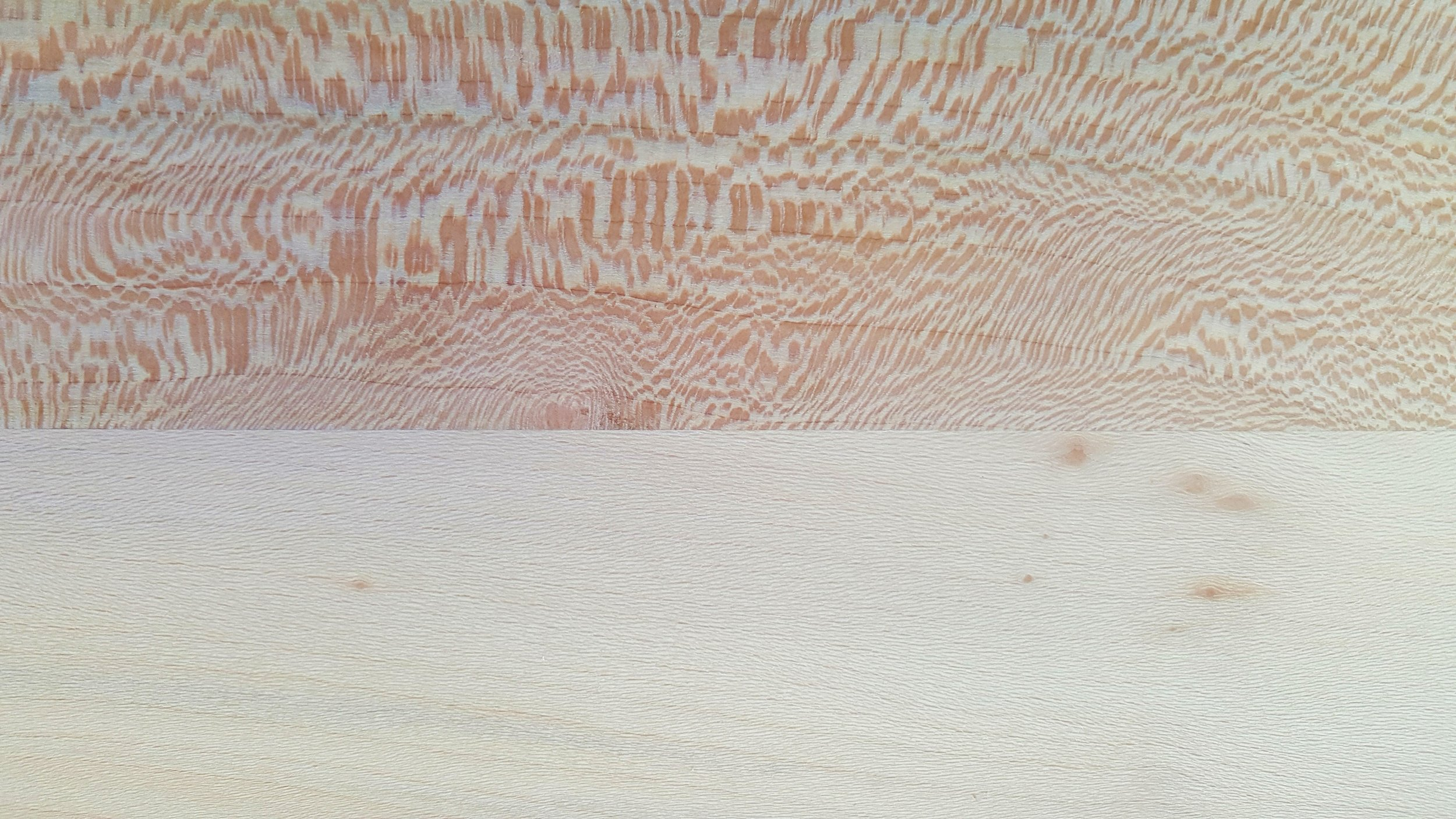 Quarter sawn Lacewood and regular London Plane
