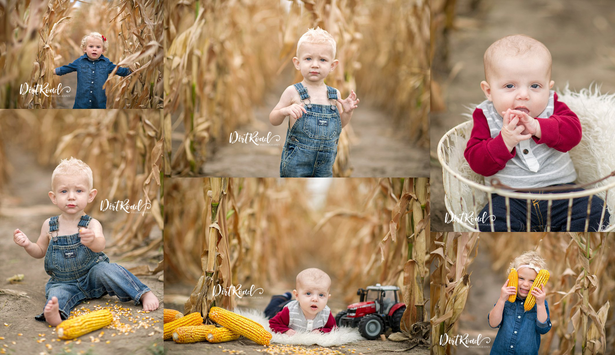 nebraska photographer, nebraska child photographer, southeast nebraska photographer, farm photographer in nebraska, nebraska kid photographer, wilber nebraska photographer, lincoln nebraska photographer, corn field mini session, nebraska corn field, nebraska corn photographer, Nebraska Photographer, Nebraska Newborn Photographer, Nebraska Family Photographer, Nebraska Senior Photographer, Nebraska Child Photographer, Wilber Nebraska, Dorchester Nebraska, Crete Nebraska, Friend Nebraska, DeWitt Nebraska, Plymouth Nebraska, Roca Nebraska, Sprague Nebraska, Martell Nebraska, Kramer Nebraska, Lincoln Nebraska, Milford Nebraska, Wilber Nebraska Photographer, Dorchester Nebraska Photographer, Crete Nebraska Photographer, Friend Nebraska Photographer, DeWitt Nebraska Photographer, Plymouth Nebraska Photographer, Roca Nebraska Photographer, Sprague Nebraska Photographer, Martell Nebraska Photographer, Kramer Nebraska Photographer, Lincoln Nebraska Photographer, Milford Nebraska Photographer