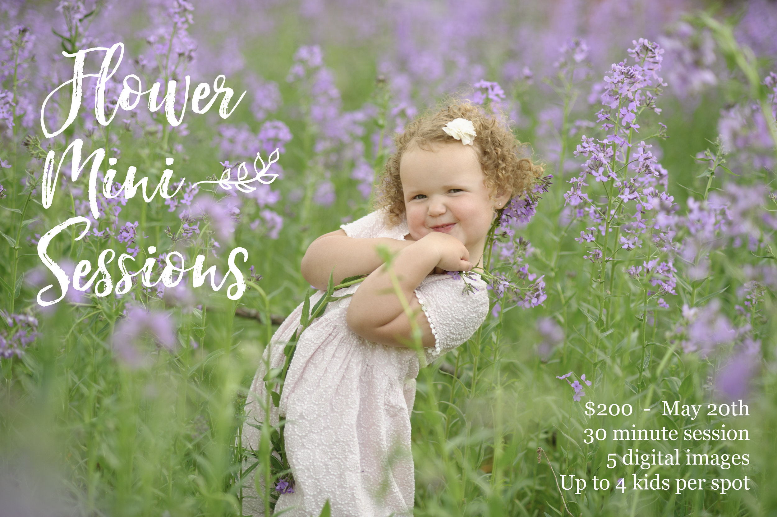 nebraska flower mini sessions dorchester ne photographer kelsey homolka nerud