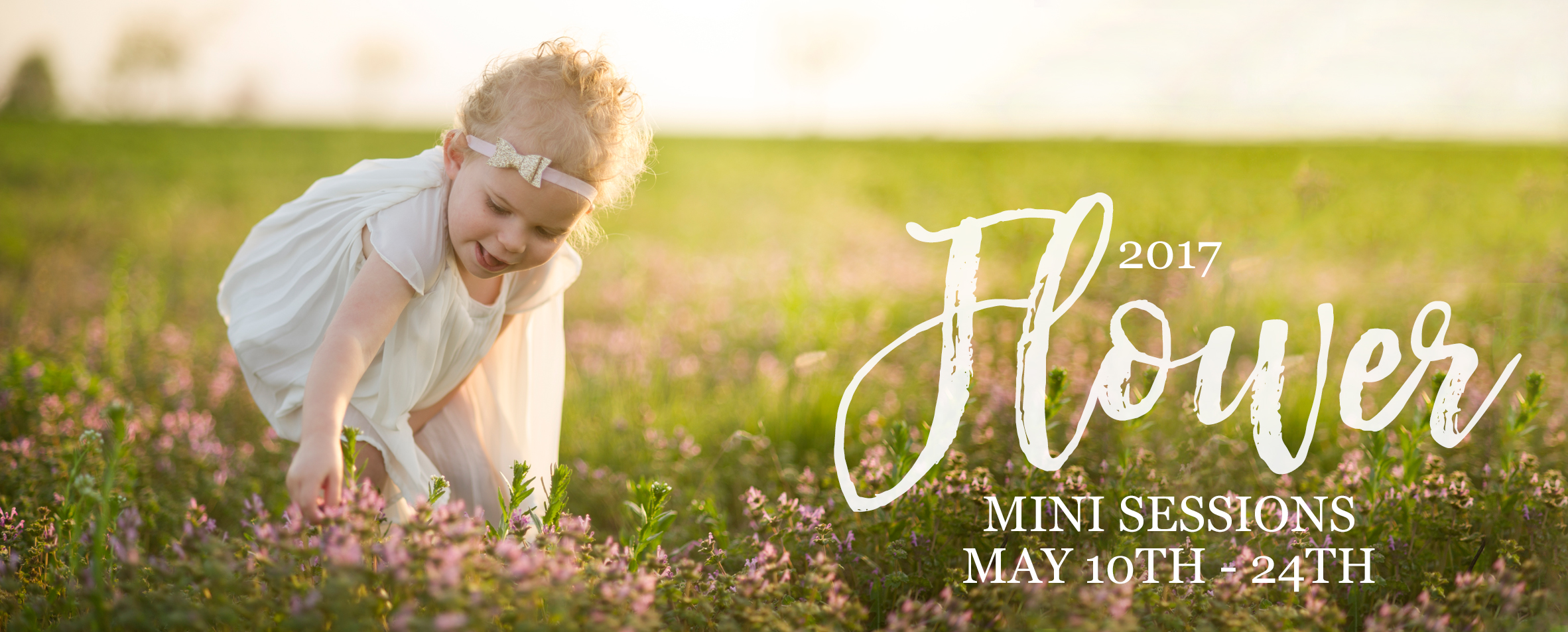 nebraska flower mini sessions dorchester ne photographer kelsey homolka nerud