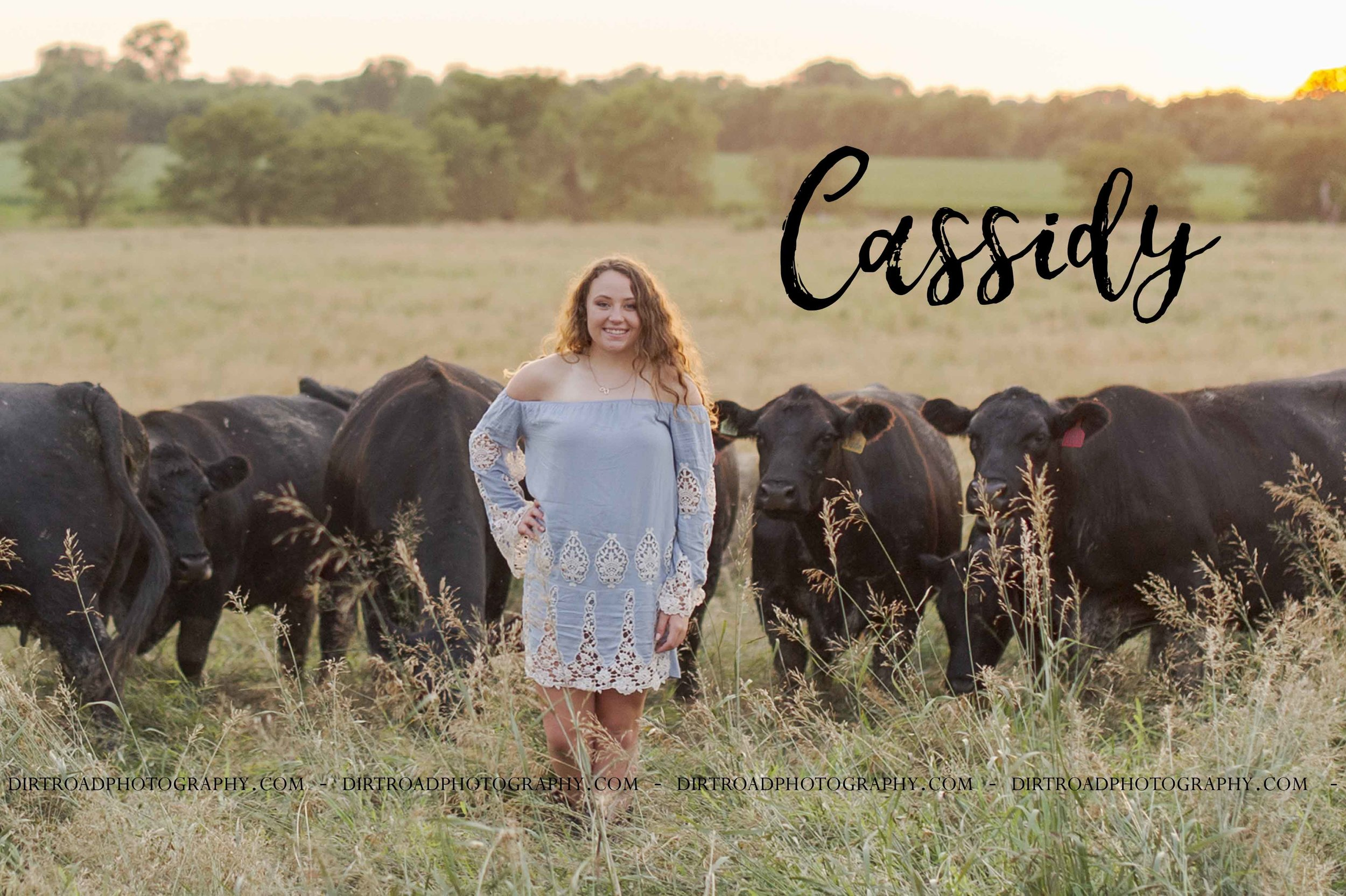 images of high school girl senior photos named cassidy kowalski of wilber nebraska who went to tri-county high school in dewitt nebraska and is part of the class of 2020. photos were taken near wilber nebraska in saline county at farms. photo includes tall glass buildings, cattle, show cows, blue dresses, summer, sunsets, and dirt roads. cassidy is also wearing pink tank top with blue denim jeans as well as floral off the shoulder dress and sandals. girl is dressed in brown cowboy boots with blue lace dress with long brown curly hair and styled make-up. dirt road surrounded by trees and dust at sunset. tall grass with a sunset behind as well. photographer is kelsey homolka nerud of wilber nebraska who specializes in high school senior photography and senior pictures.