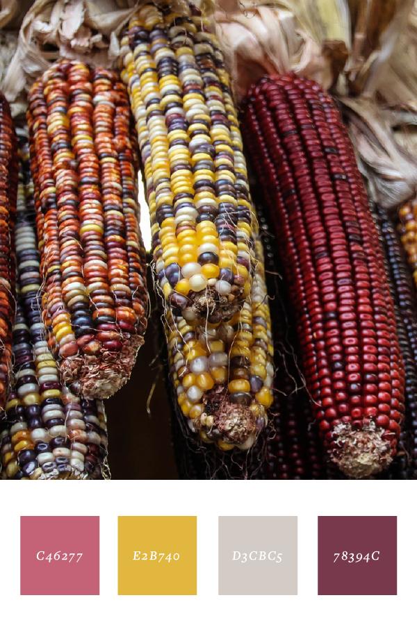 Corn tones.png