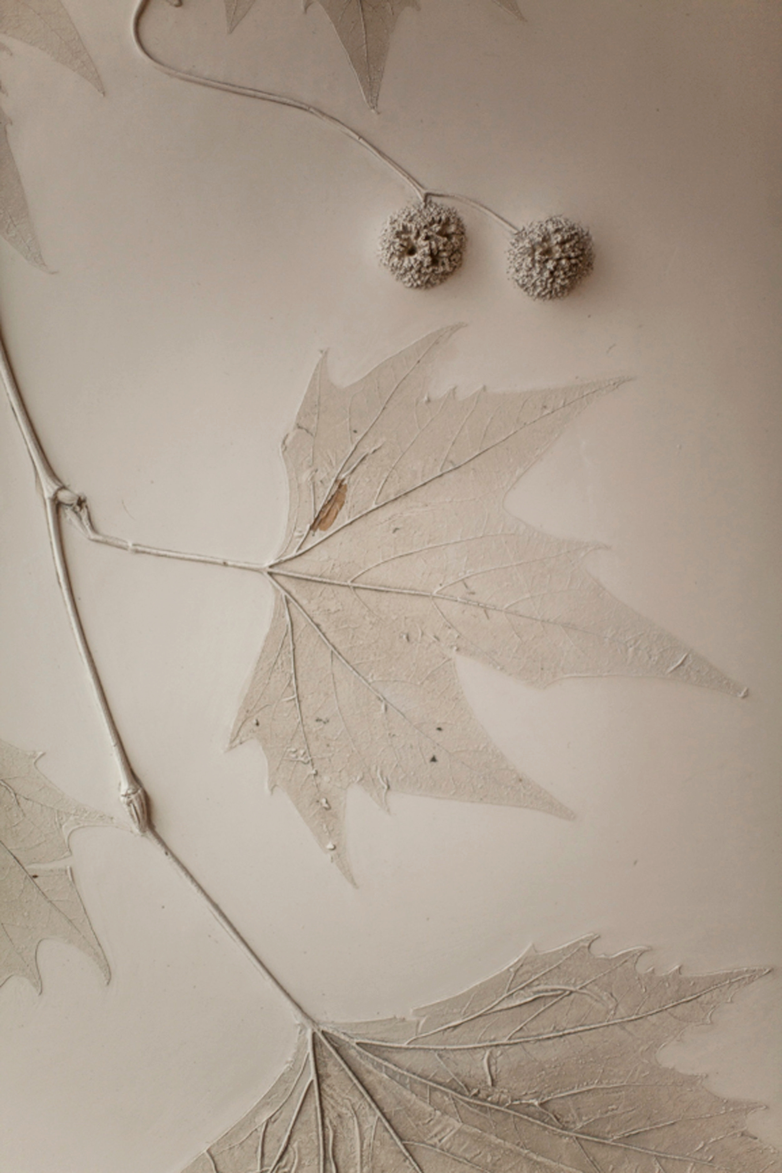 Detail from our plain tree plaster mural at HIDE Above