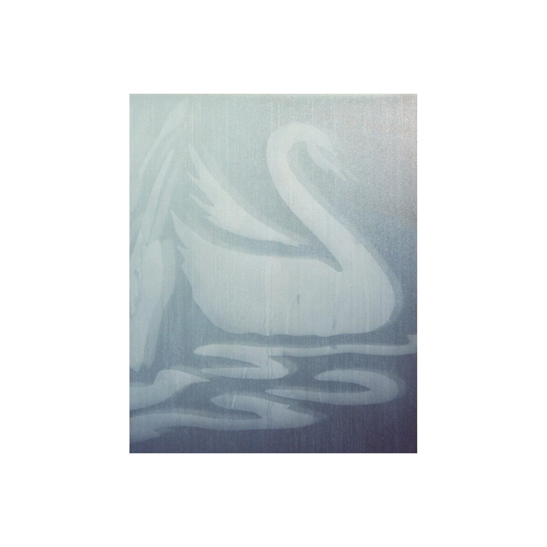 Glass Swan  2012