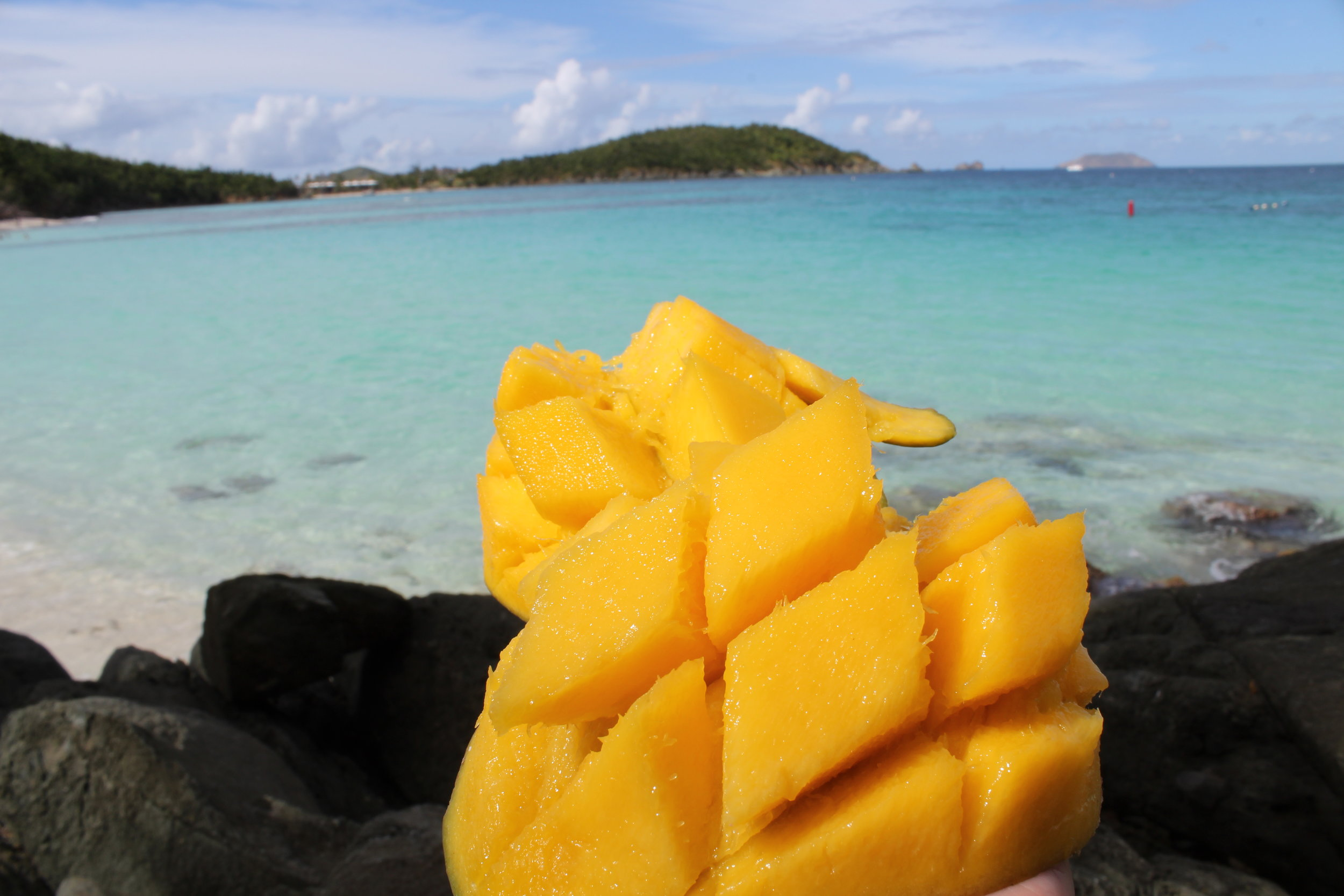 A mango I enjoyed while on vacation in St. John with my family.