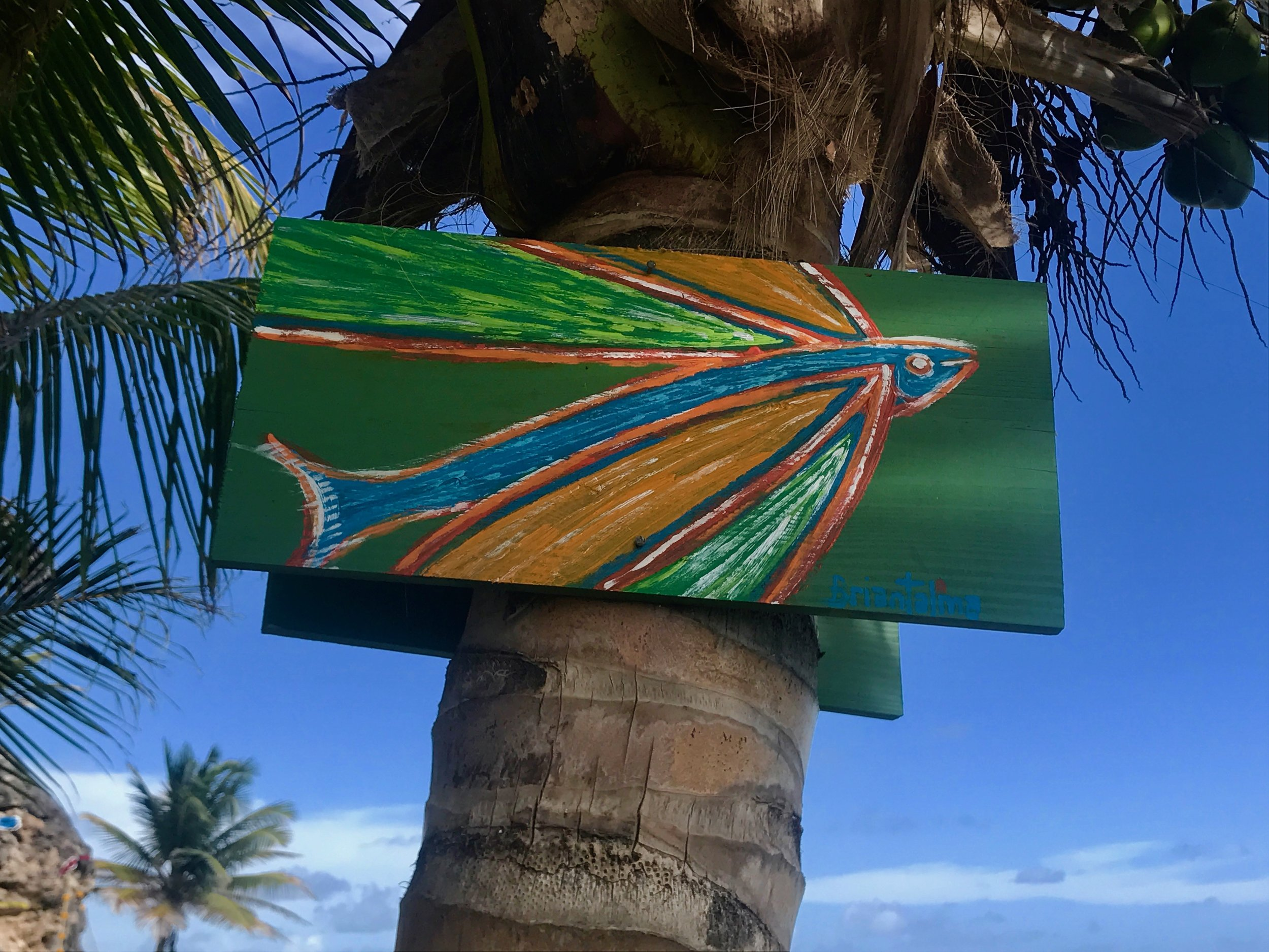 Flying fish painting