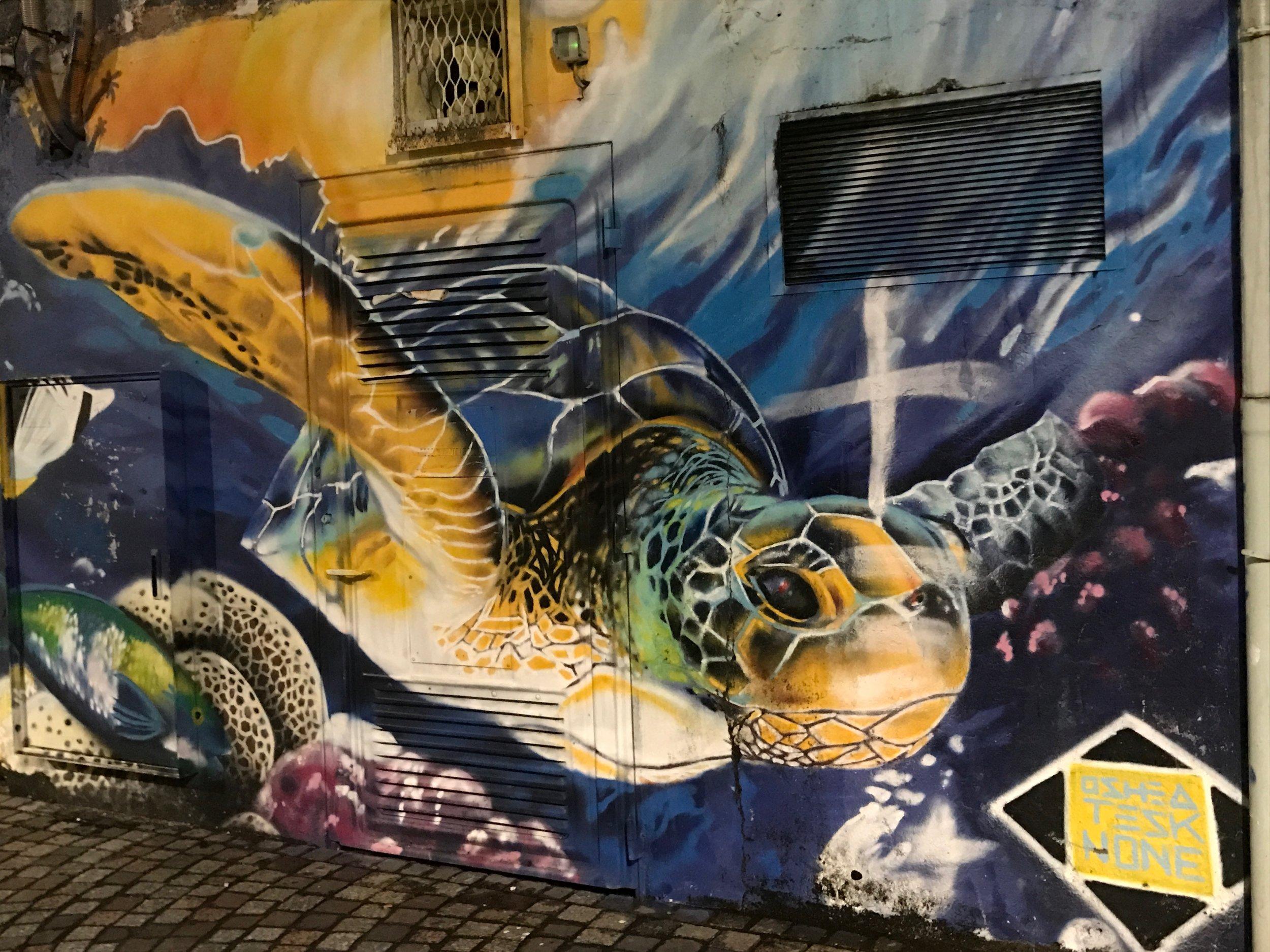 Turtle mural, Fort De France