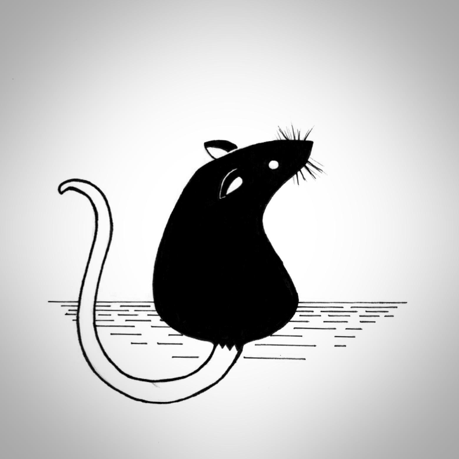 Day 28: Rat