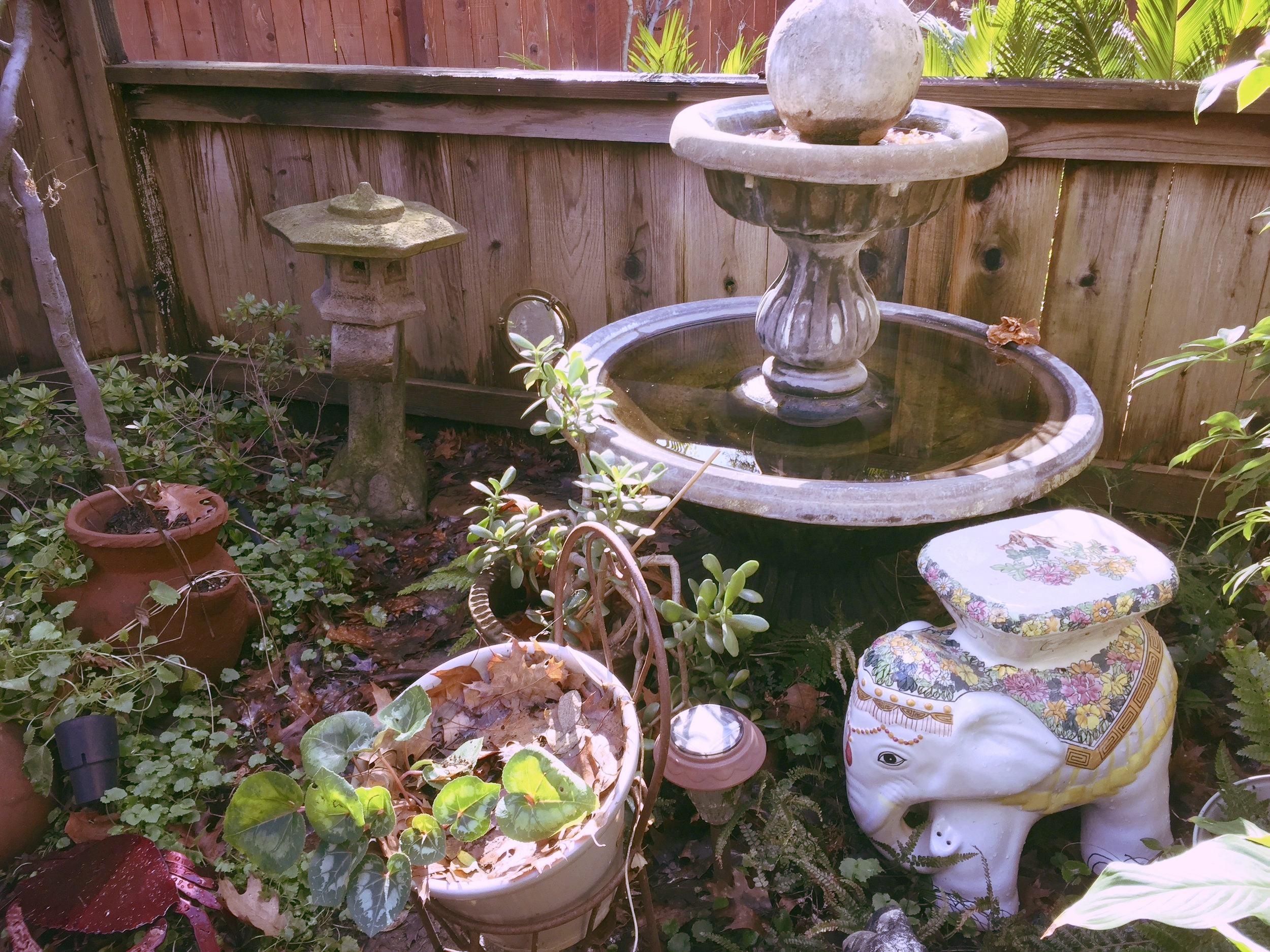 Sweet back garden that was decorated with statuary and fountains.