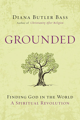 Grounded: Finding God in the World—A Spiritual Revolution