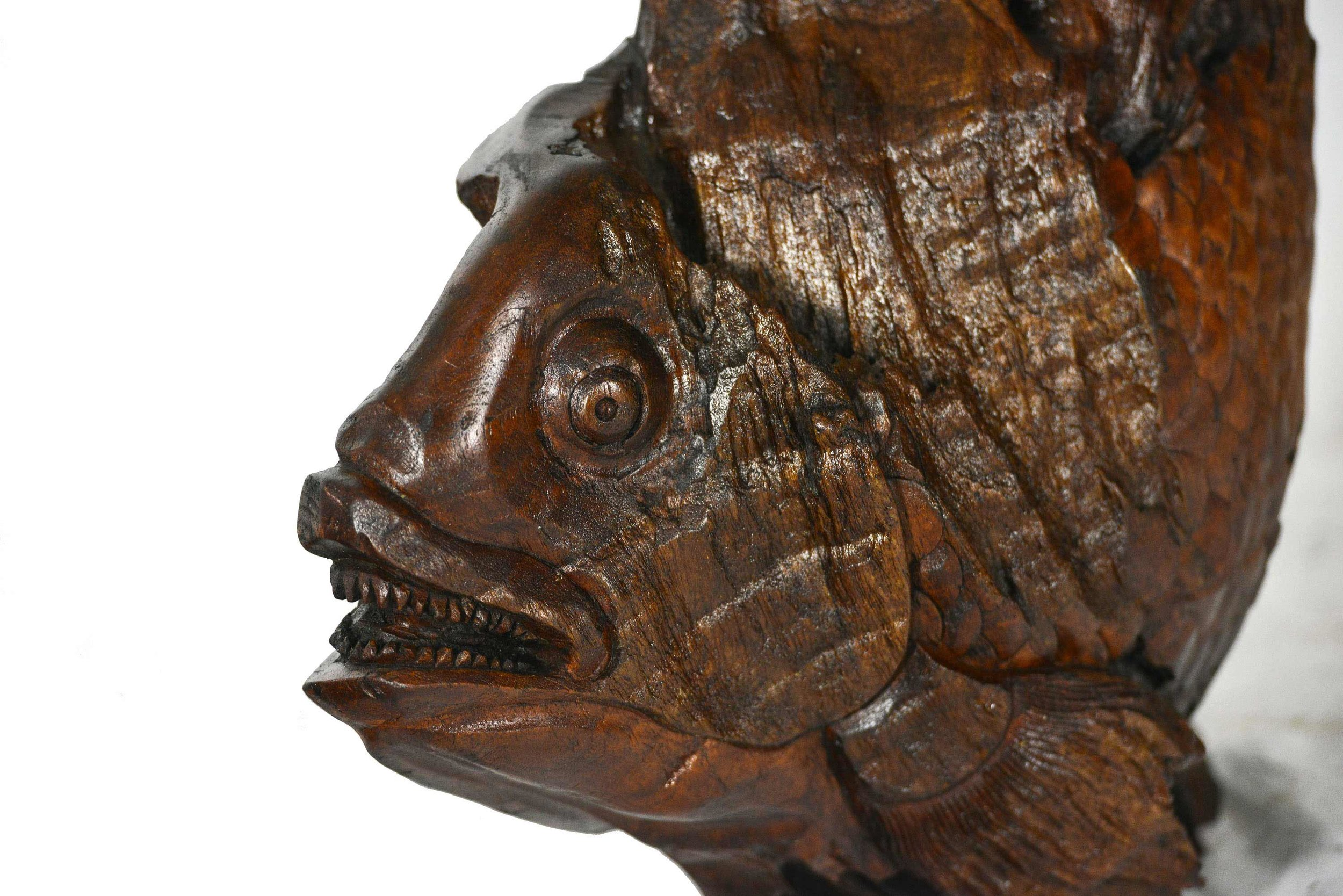 Fish-8_73.jpg