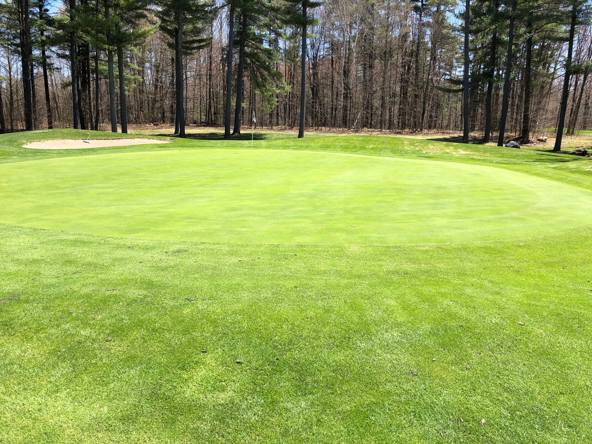 4th hole green - photo taken on May 8, 2019