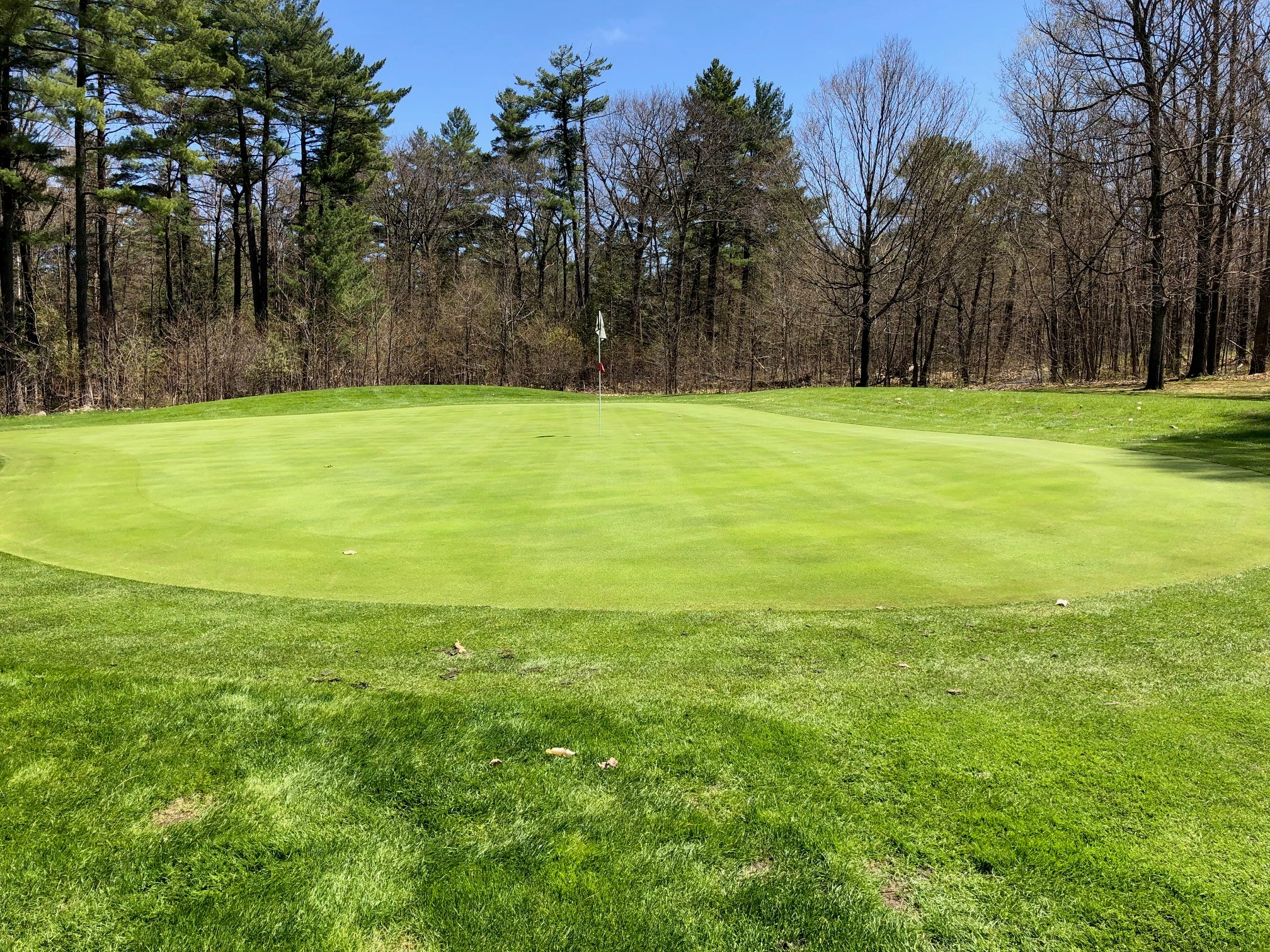 11th hole green - photo taken on May 8, 2019