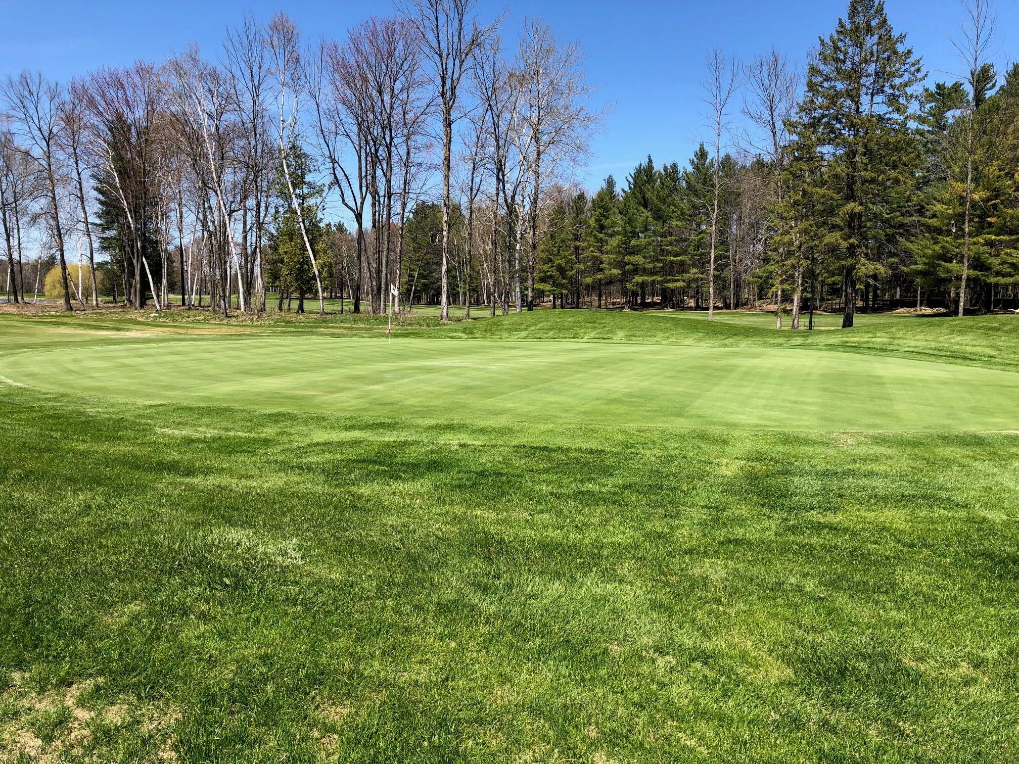 14th hole green - photo taken on May 8, 2019