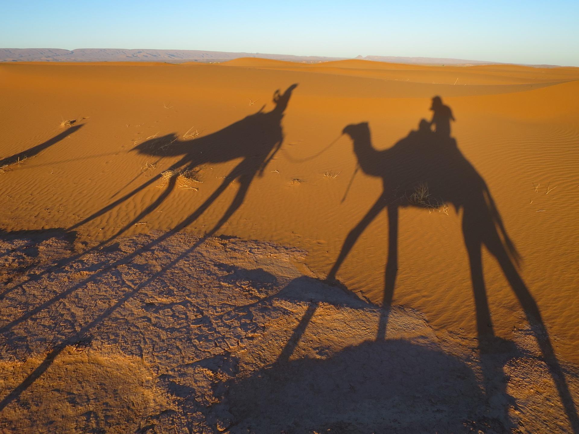 desert-1199885_1920.jpg