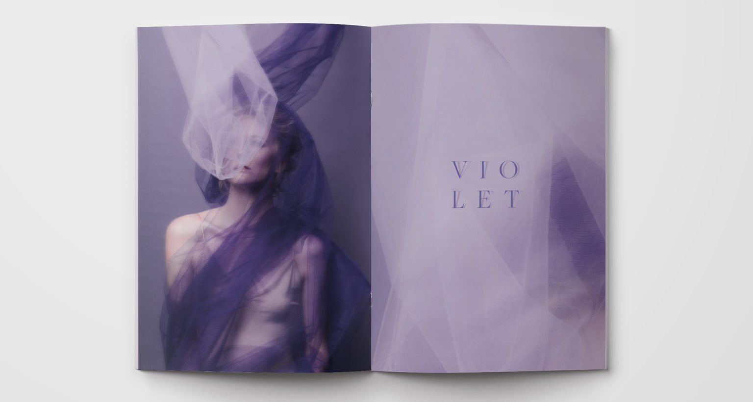 color-series-ink-and-mortar-violet-layout-1-1536x820.jpg