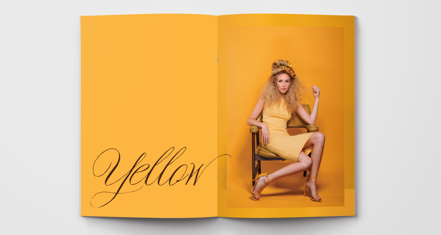 color-series-ink-and-mortar-yellow-layout-1-1536x820.jpg