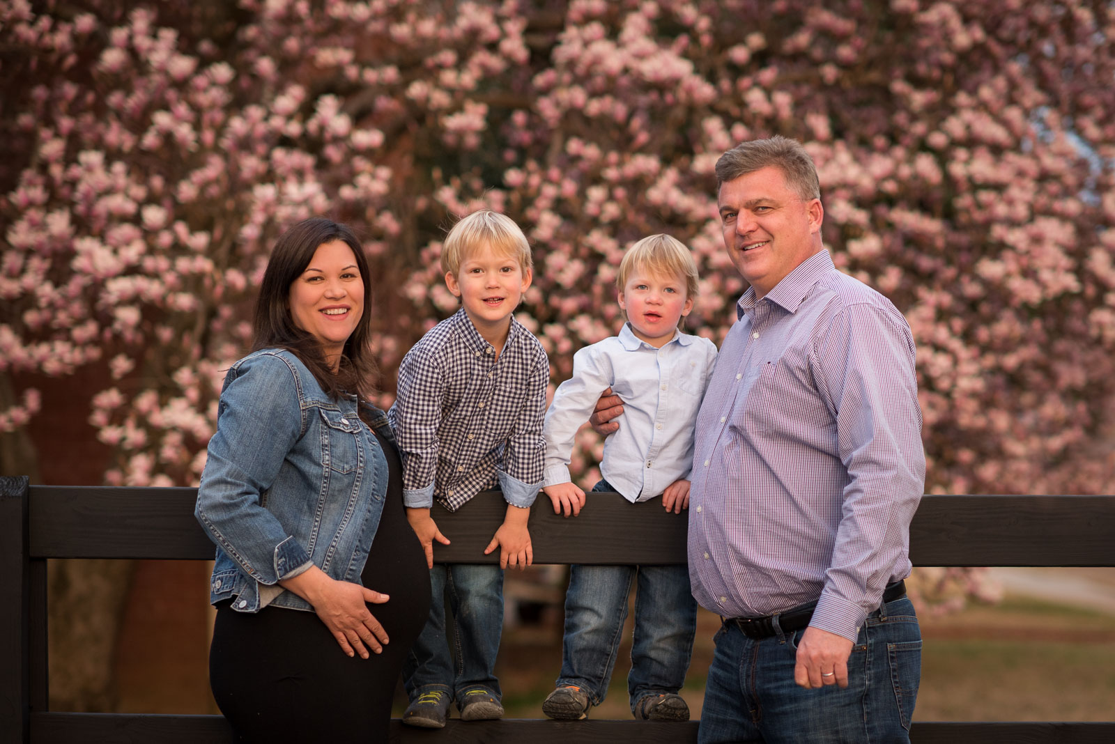 Collierville Pregnancy Photographer
