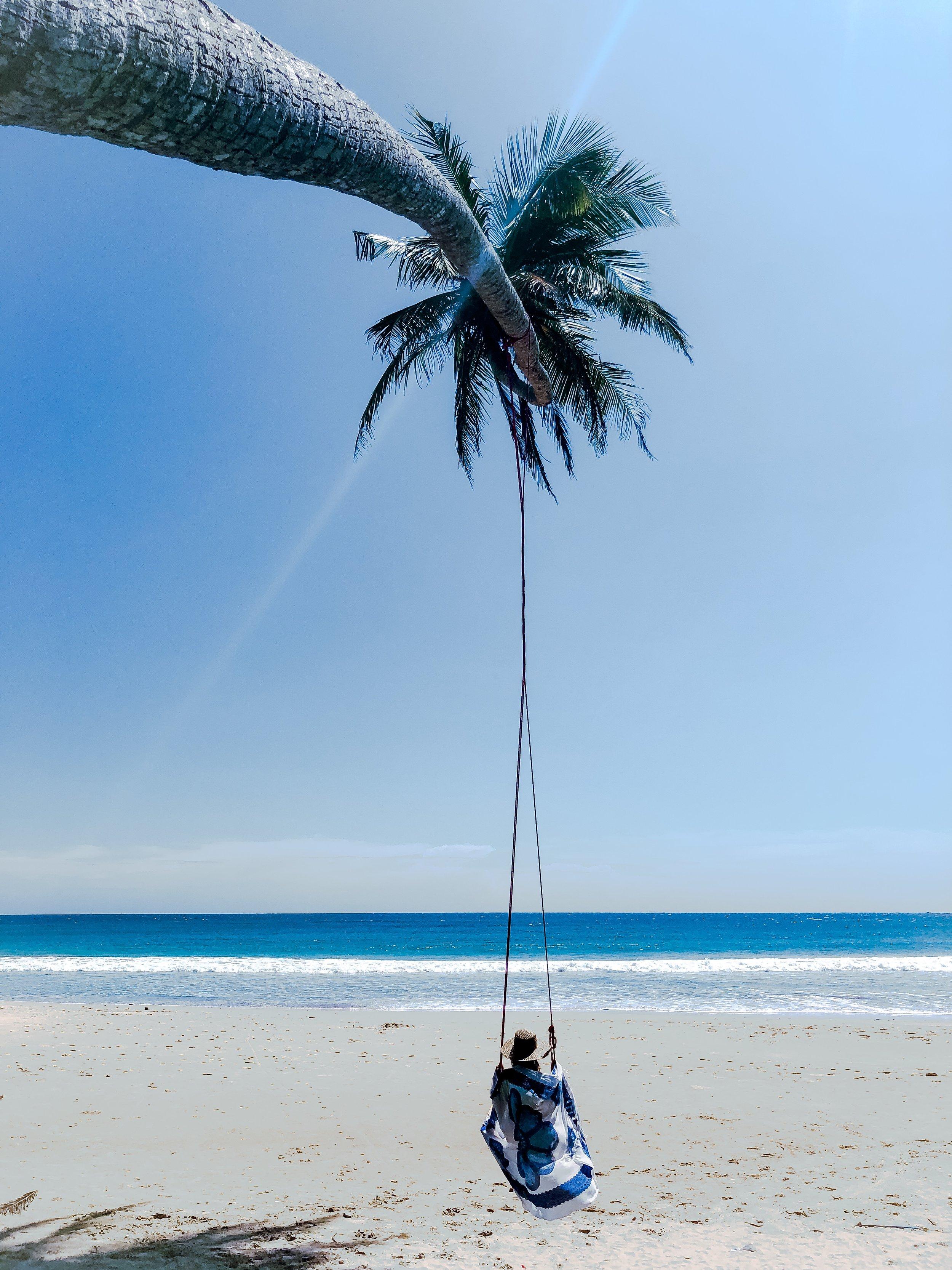 Any Palm Tree Will Do