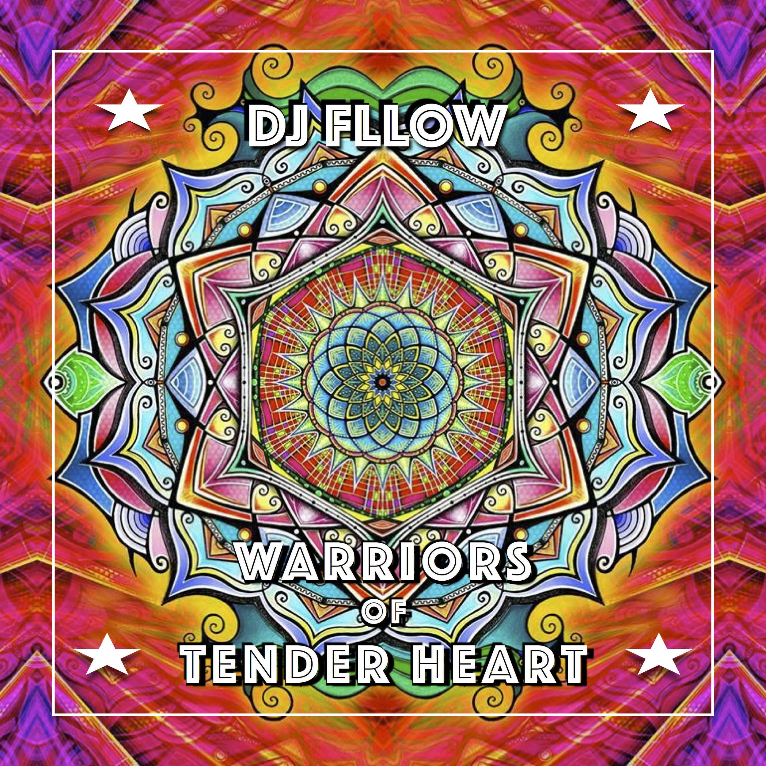 DJ FLLOW WARRIORS ALBUM COVER.jpg