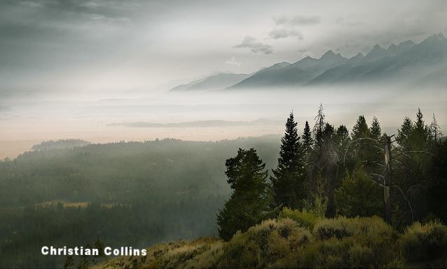 Christian Collins.jpg