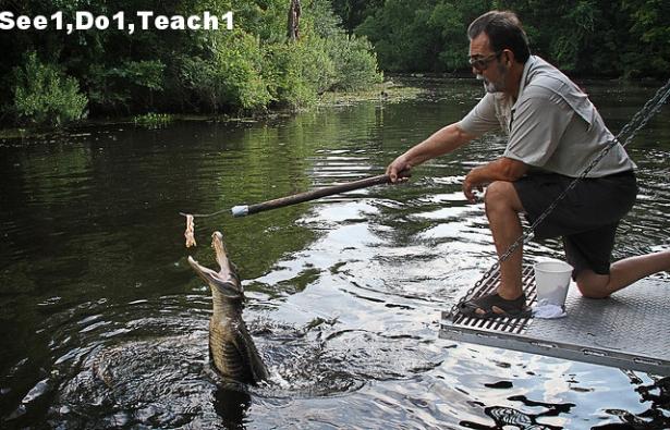 see1 do1 teach1.jpg