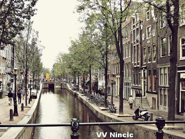 VV Nincic.jpg