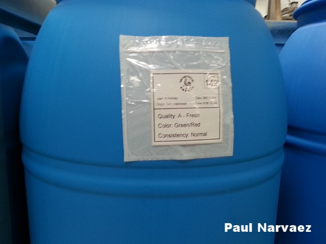 Paul Narvaez barrel.jpg