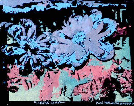 "Ch'ilatah Hozhoon , 5-color silkscreen print on paper, 6"" x 8"""