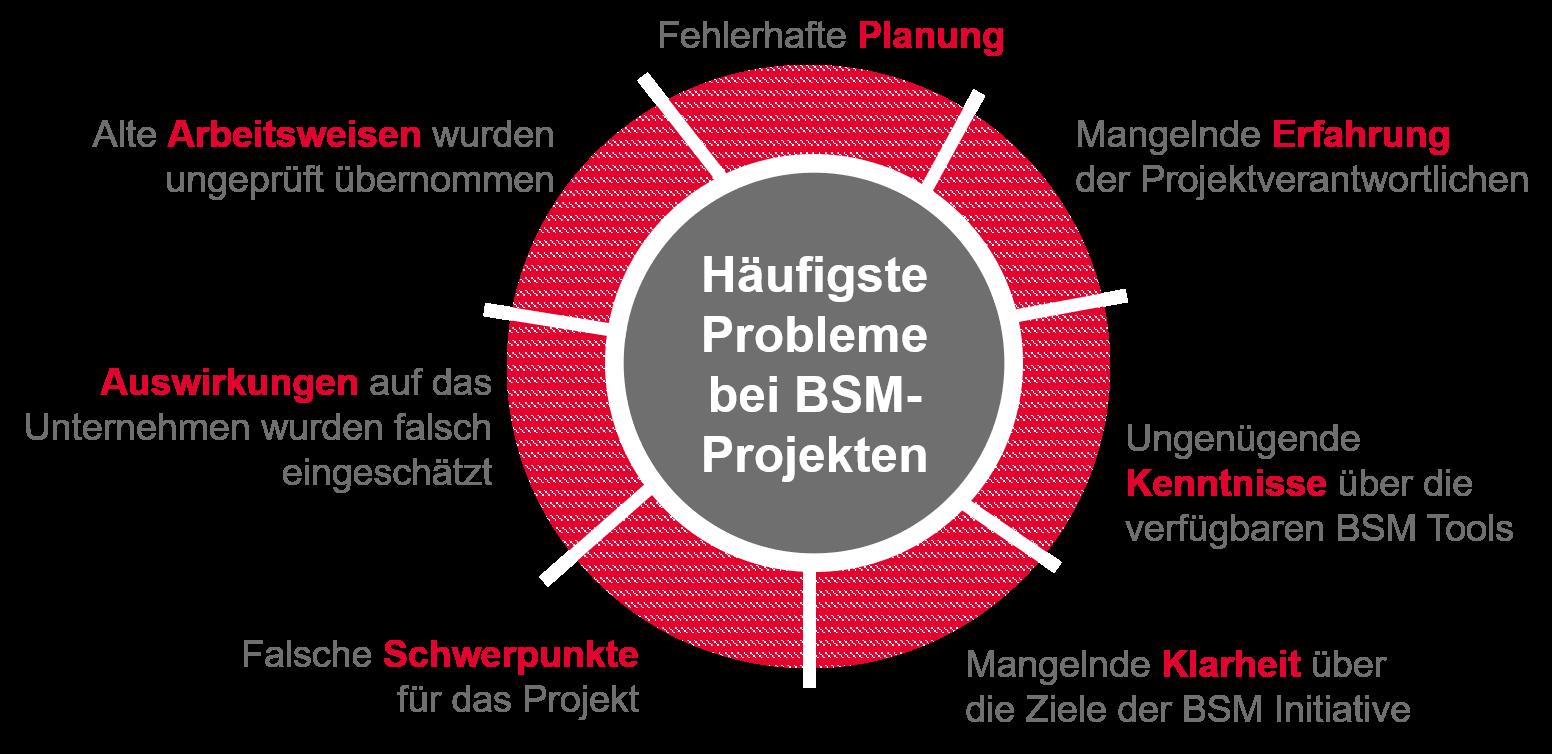 Schaubild_Probleme bei BSM-Projekten.png