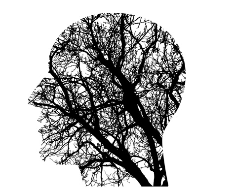 brain+tree.jpg