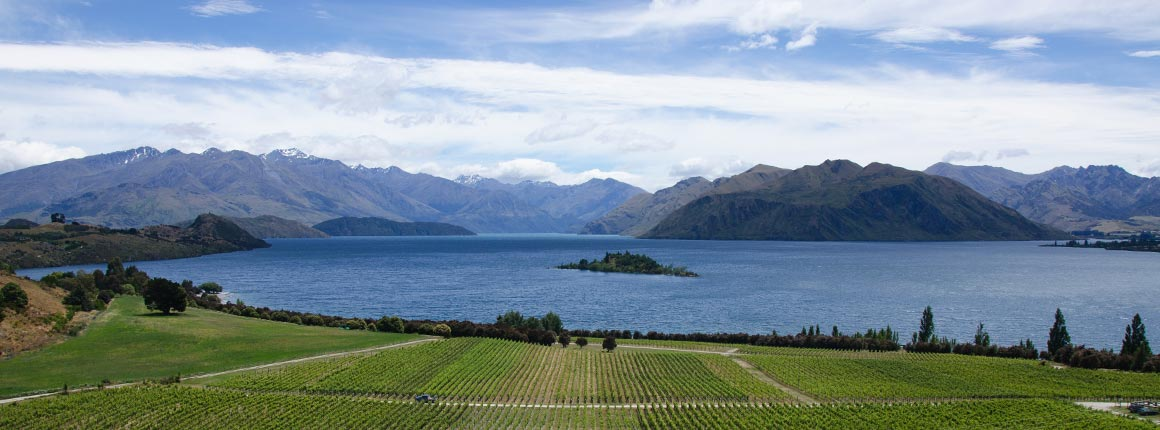 Take a food tour of New Zealand with Grass Tree Kitchen
